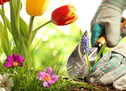5+1 tipp a derékfájás elkerülésére a kertben